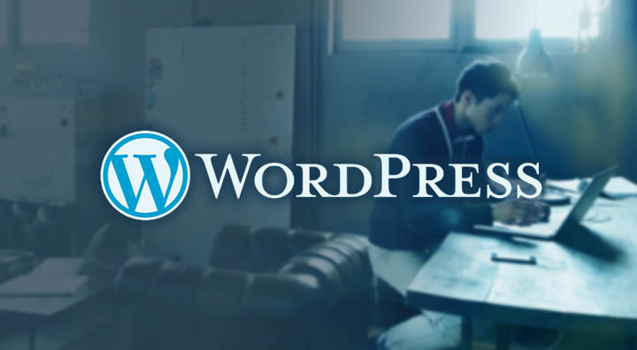 WordPress - Themes (WP)